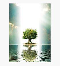 Paz en el mundo Photographic Print