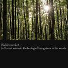 Waldeinsamkeit by OldBirch