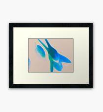 Blue in Macro Framed Print
