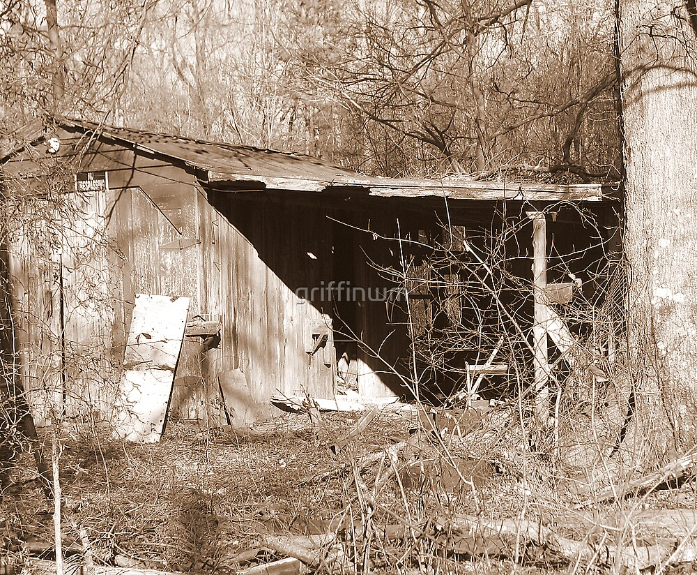 Dilapidated.. by griffinwm
