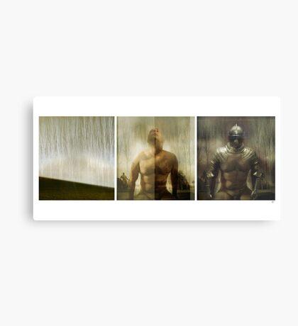 Armour maketh the man Metal Print