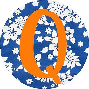 Q by emiller98