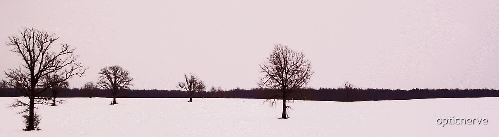 brown trees white snow by opticnerve