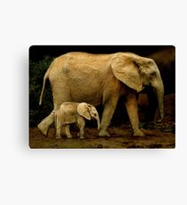 Strolling With Mom Canvas Print