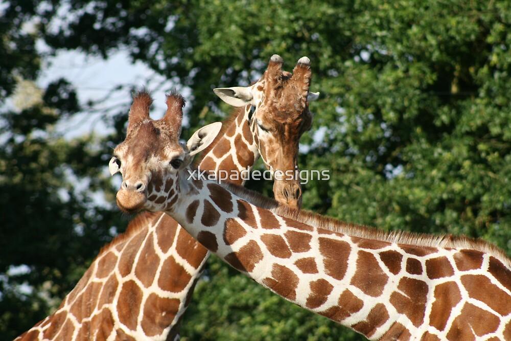 Giraffe by xkapadedesigns