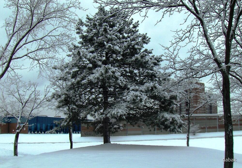 Snow-white by dabak