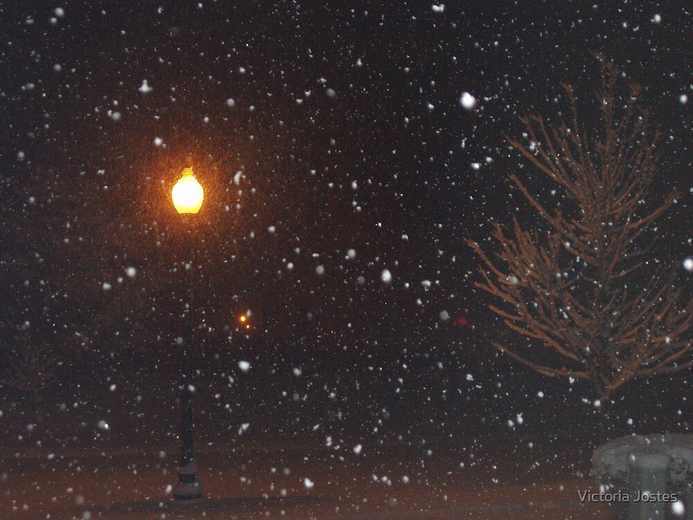 Late night snow by Victoria Jostes