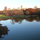 Central Park in the Fall by Jeremy Muratore