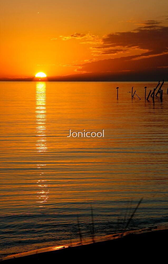 Golden Hues by Jonicool