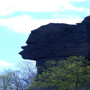 Stone Face Rock by CJ30