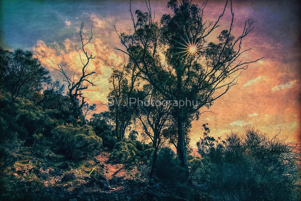 Sunglow by DVJPhotography