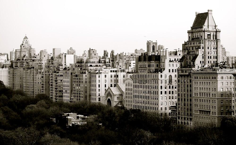 New York by Robin Robb