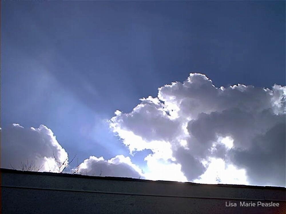 Cool Cloud  by Lisa  Marie Peaslee