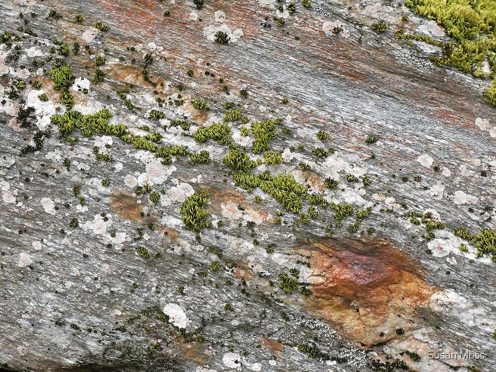 Glacier rock colours by Susan Moss