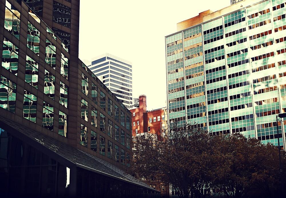 Evening Urbanization by hoopaloo
