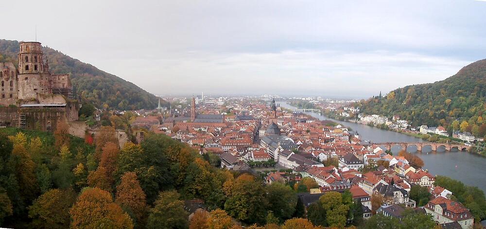 Heidelberg Old Town by Grem