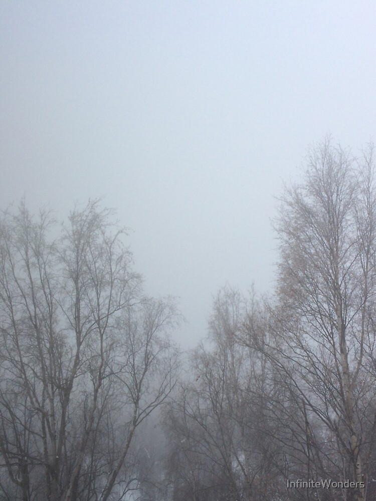 Mystic Winter Morning by InfiniteWonders