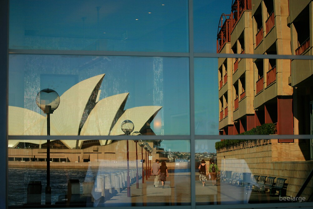 Reflect on Sydney by beelarge
