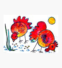 Chickens for children up to 80 years and older... Photographic Print
