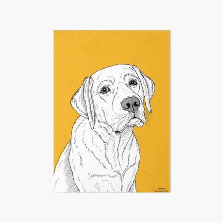 Labrador Dog Portrait Art Board Print