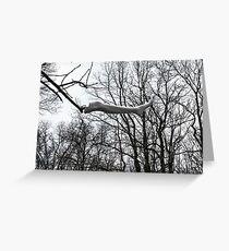Leg in Tree Greeting Card