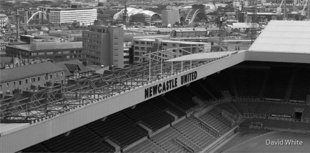Newcastle  by David White