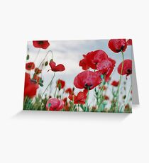Field of Poppies Against Grey Sky  Greeting Card