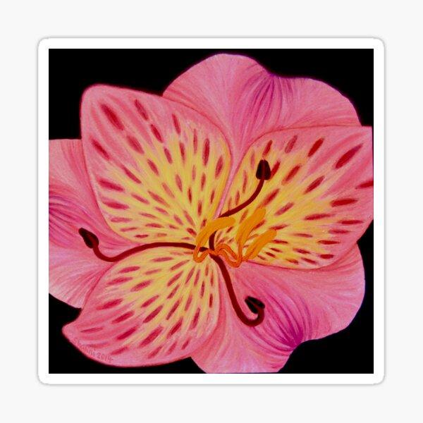 Lily art design, pink lily, flower art, tiger lily, pink floral print Sticker