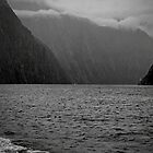 Milford Sound, New Zealand #2 by Elaine Teague