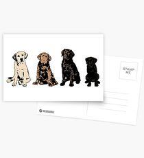 Rainbow of Puppy Love Postcards