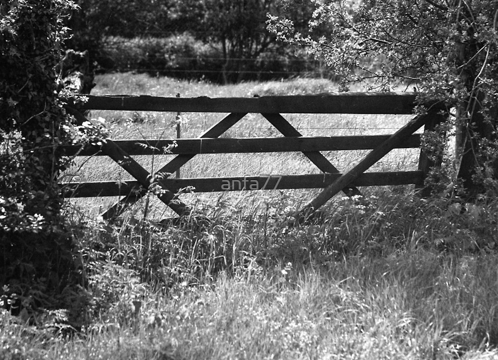 old gate in spring by anfa77