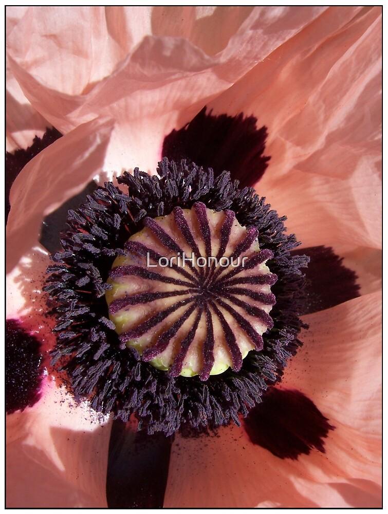 Poppy by LoriHonour