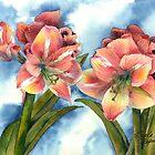 Breezy Pink Amaryllis by Gayela Chapman