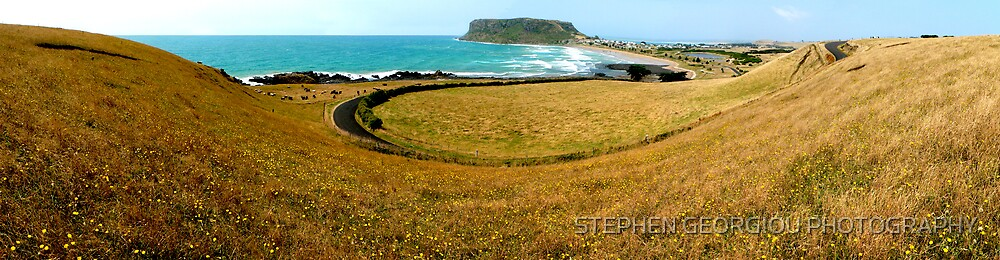 Field of Dasies-The Famous Nut in Stanley ,Tasmania by STEPHEN GEORGIOU PHOTOGRAPHY
