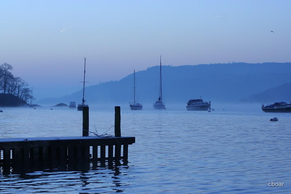 Morning Frost by cboar