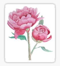 Some peonies Sticker