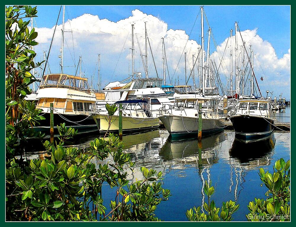 Sunny Harbor by Ginny Schmidt