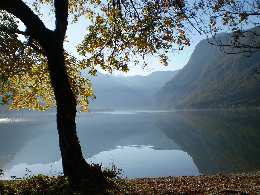 Autumn at Lake Bohinj Slovenia by SammyH