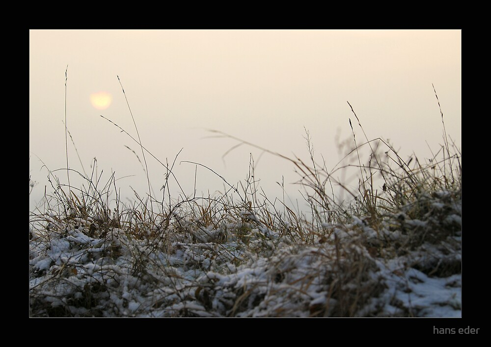 winter sun II by hans eder
