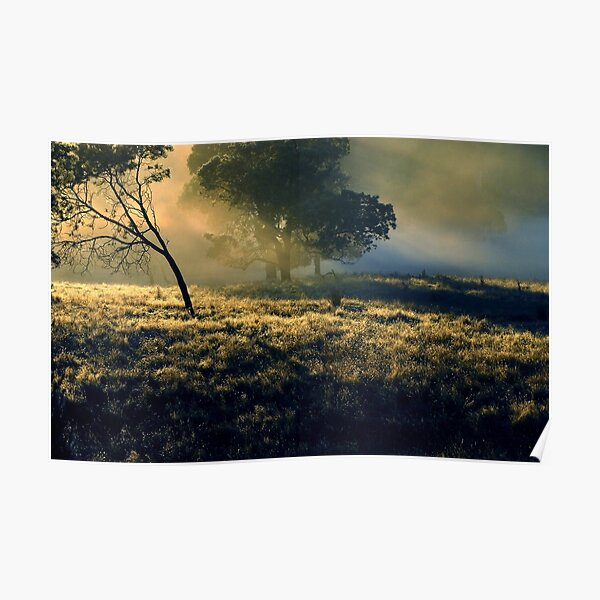 Sunrise Near Mount Field National Park Poster