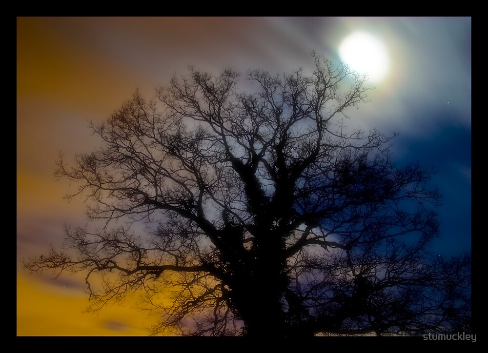 By The Light Of The Moon by stumuckley