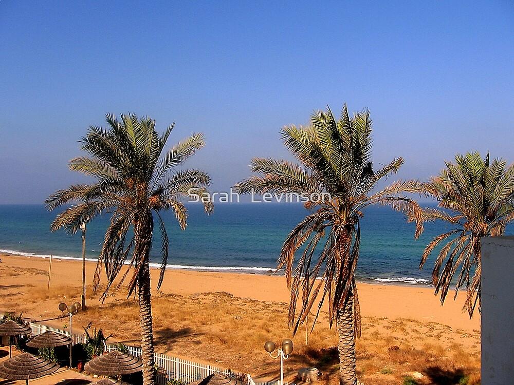 Palm tree beach, Naharyah by day by Sarah  Levinson