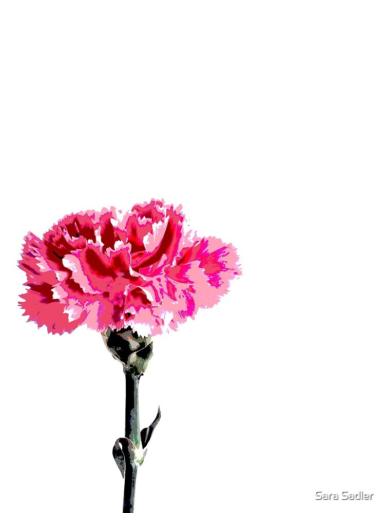 Psychedelic carnation by sadler2121