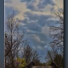 A Bridge in Springtime by Sheryl Gerhard
