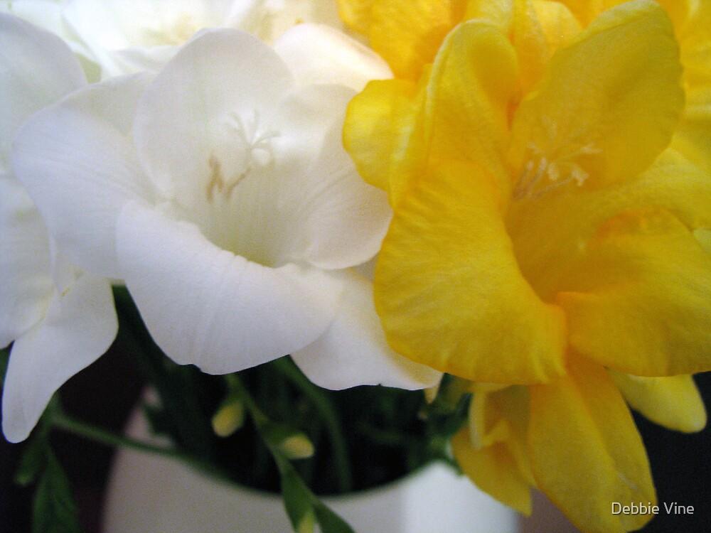 Freesia's in Vase by Debbie Vine