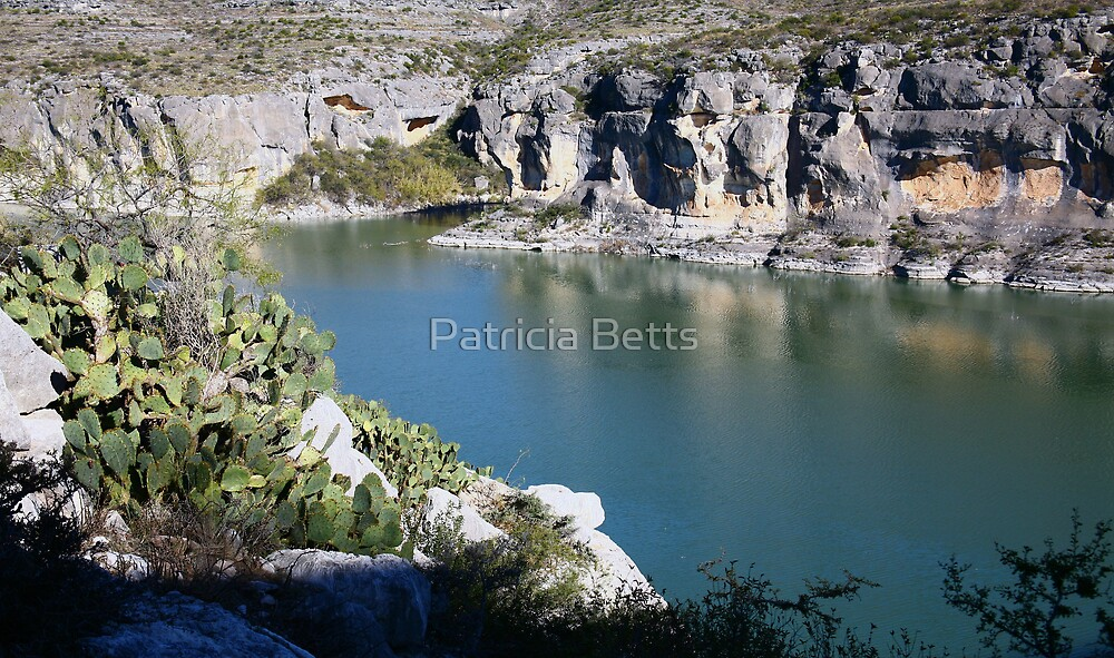 Pinco River  by Patricia Betts