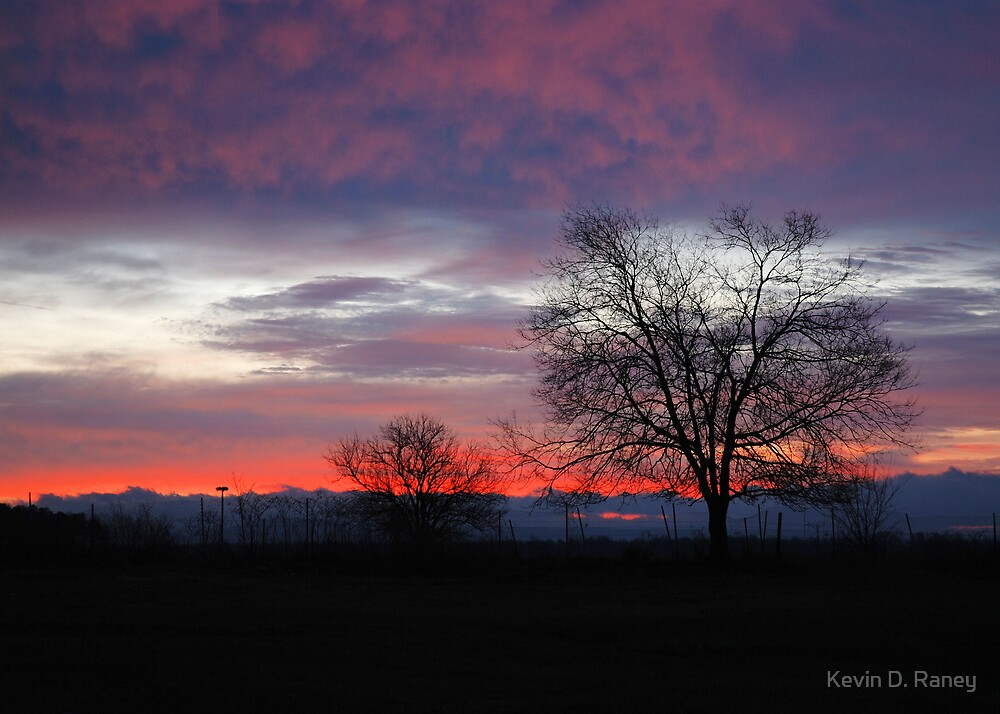 Beautilful Beginning by Kevin D. Raney
