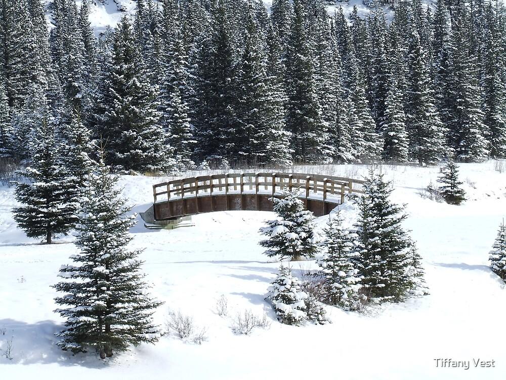 Cascading Ponds by Tiffany Vest