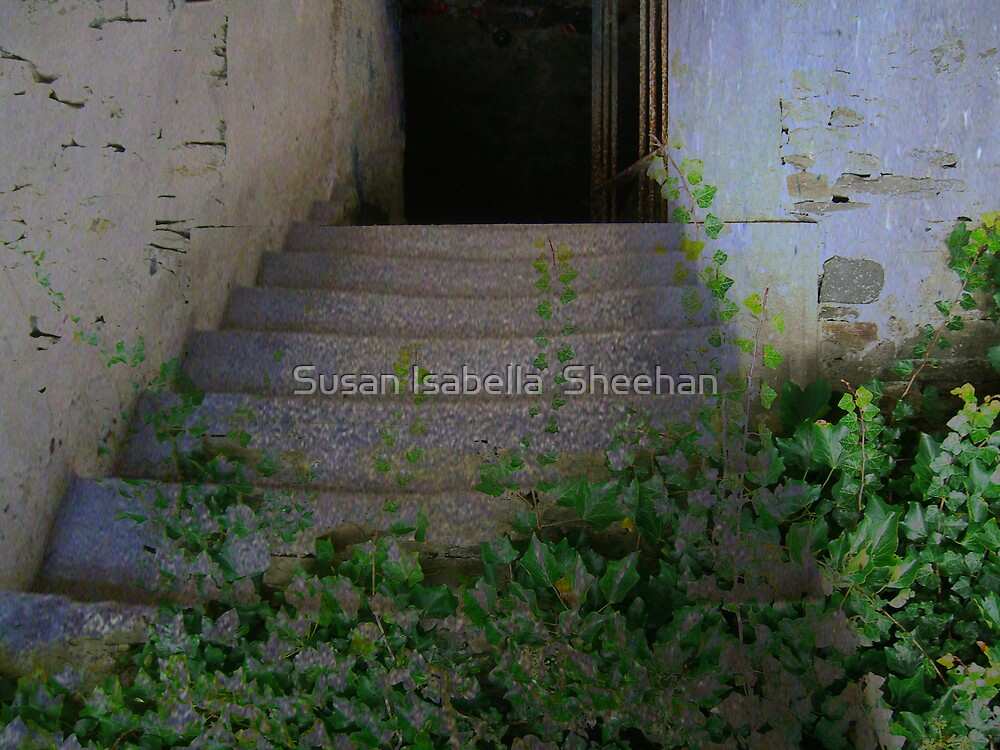 The Door To Every Where by Susan Isabella  Sheehan