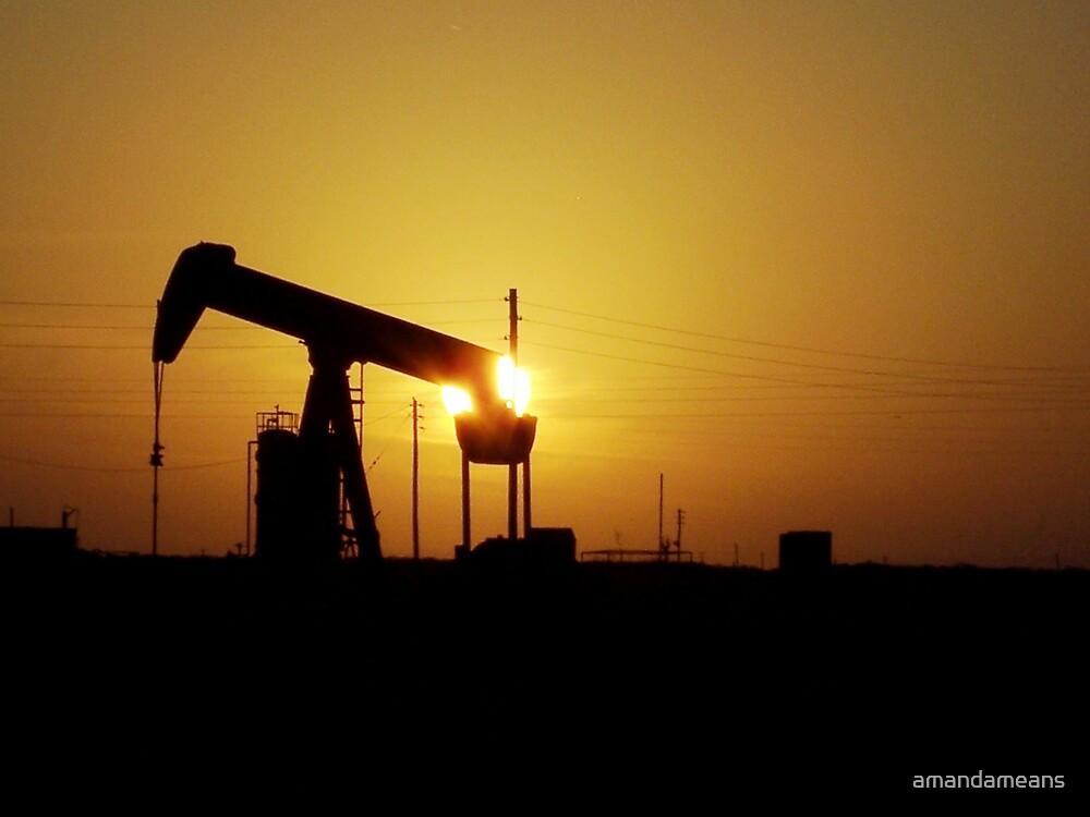 Texas Oilfield by amandameans